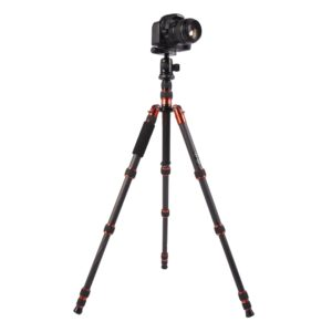 Triopo GT-2505x8.C Adjustable Portable Carbon Fiber Tripod with B-1 Aluminum Ball Head for Canon Nikon Sony DSLR Camera(Black) (TRIOPO)