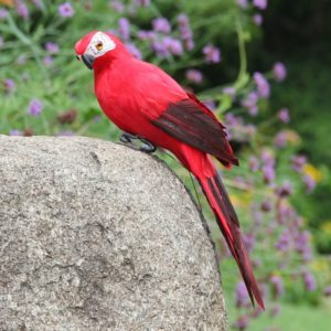 25cm Simulation Parrot Simulation Macaw Horticultural Decoration (Red)
